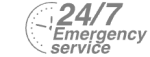 24/7 Emergency Service Pest Control in Hampton, KT8. Call Now! 020 8166 9746
